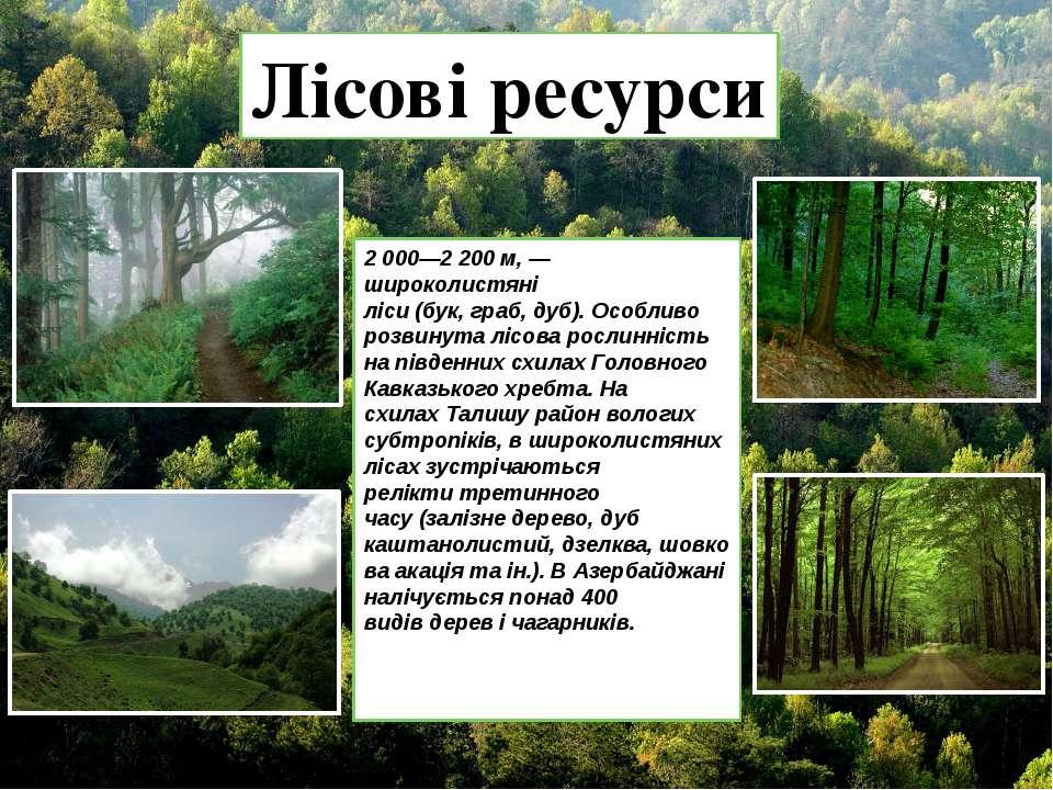 Лісові ресурси 2000—2200м,— широколистяні ліси(бук,граб,дуб). Особливо...