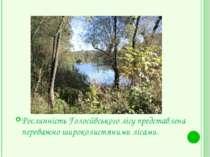 Рослинність Голосіївського лісу представлена переважно широколистяними лісами.