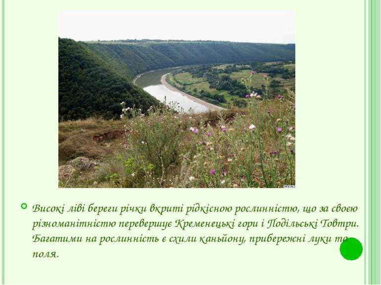Високі ліві береги річки вкриті рідкісною рослинністю, що за своєю різноманіт...