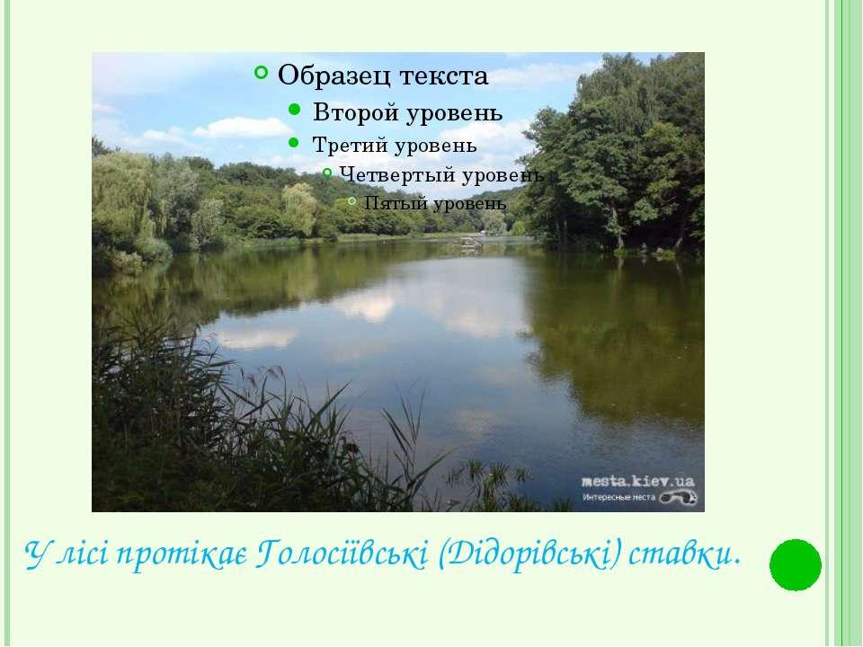 У лісі протікає Голосіївські (Дідорівські) ставки.