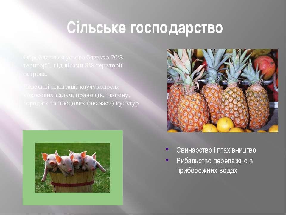 Сільське господарство Обробляється усього близько 20% території, під лісами 8...