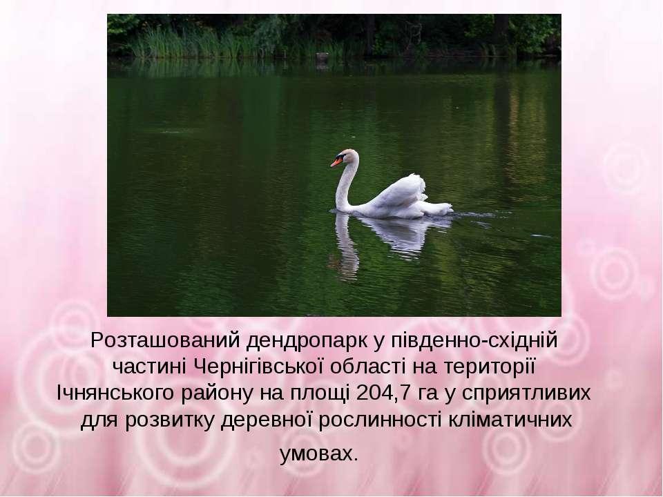 Розташований дендропарк у південно-східній частині Чернігівської області на т...