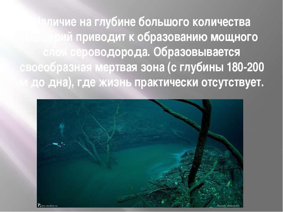 Наличие на глубине большого количества бактерий приводит к образованию мощног...