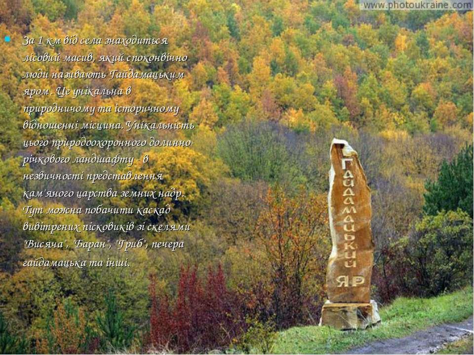 За 1 км від села знаходиться лісовий масив, який споконвічно люди називають Г...