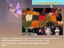 Господарство Марокко – аграрна країна з відносно розвинутою гірничодобувною т...