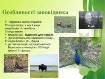 Особливості заповідника Червона книга України 30 видів флори, з них 4 види ли...
