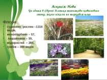 Асканія-Нова Це єдина в Європі ділянка типчаково-ковилового степу, якого ніко...