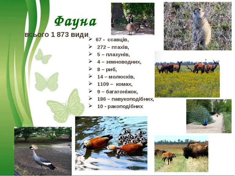 Фауна всього 1 873 види 67 - ссавців, 272 – птахів, 5 – плазунів, 4 – земново...