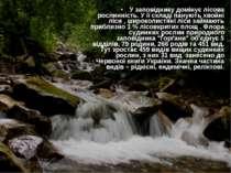 Флора У заповіднику домінує лісова рослинність. У її складі панують хвойні лі...