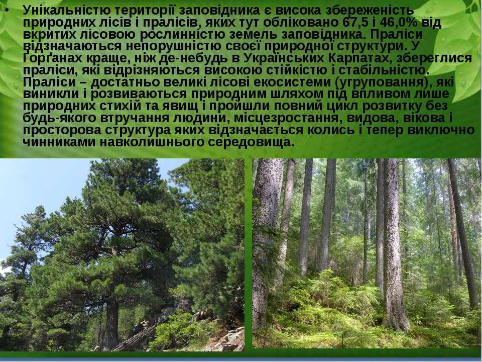 Унікальністю території заповідника є висока збереженість природних лісів і пр...