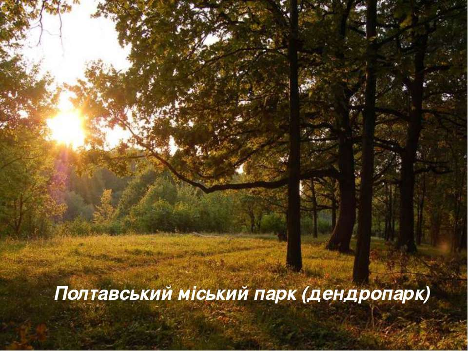 Полтавський міський парк (дендропарк)