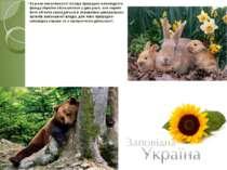 За роки незалежності площа природно-заповідного фонду України збільшилася у д...