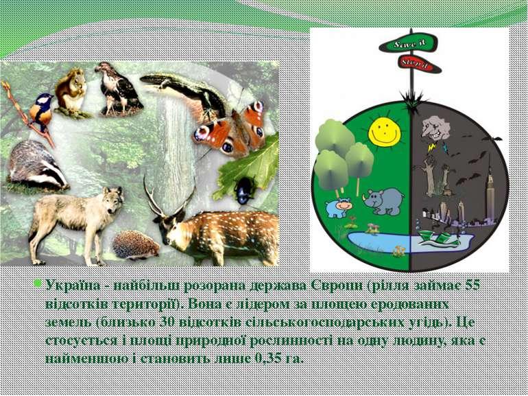 Україна - найбільш розорана держава Європи (рілля займає 55 відсотків територ...