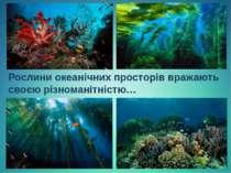 Рослини океанічних просторів вражають своєю різноманітністю…