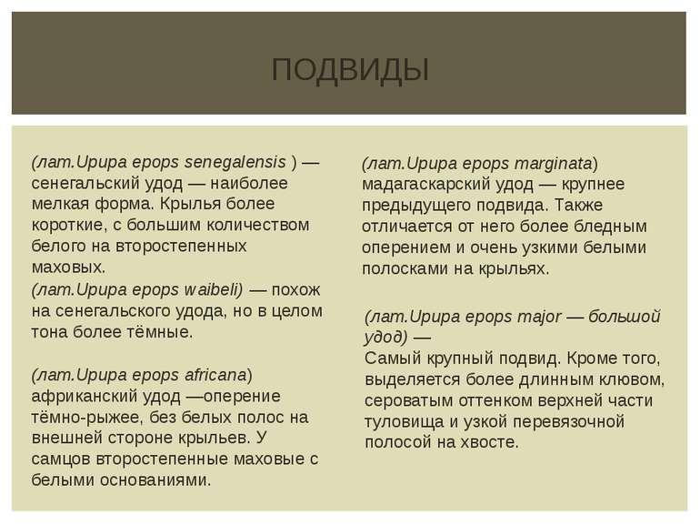 ПОДВИДЫ (лат.Upupa epops senegalensis ) — сенегальский удод— наиболее мелкая...