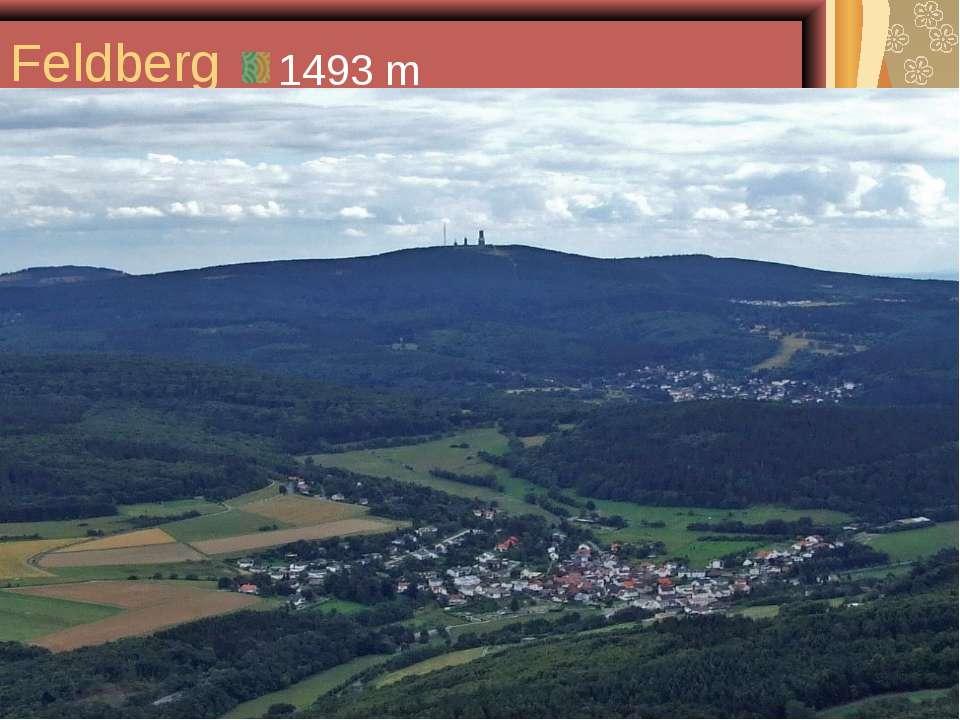 Feldberg 1493 m