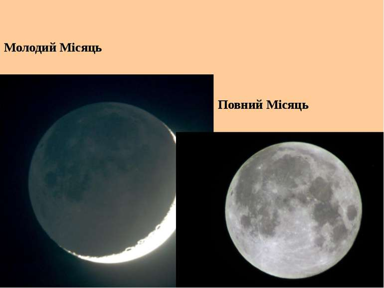 Молодий Місяць Повний Місяць