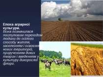 Епоха аграрної культури. Вона позначилася поступовим переходом людини до осіл...