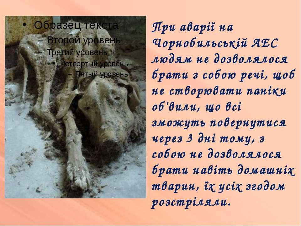 При аварії на Чорнобильській АЕС людям не дозволялося брати з собою речі, щоб...