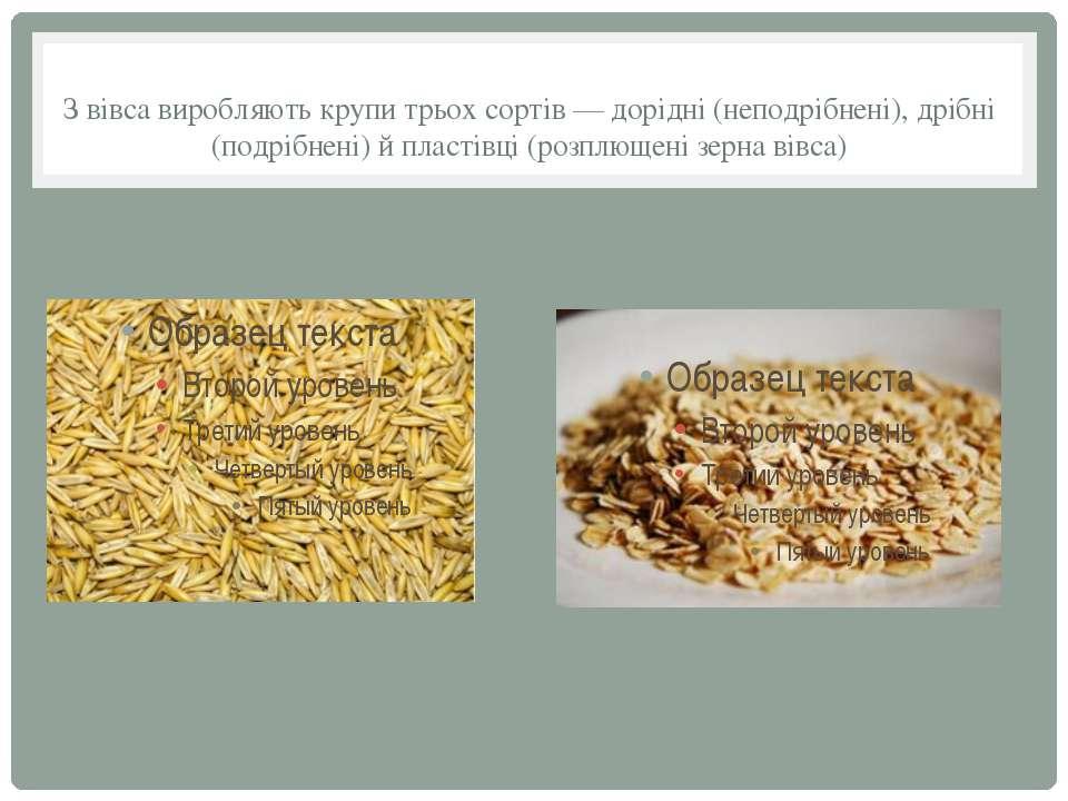 З вівса виробляють крупи трьох сортів — дорідні (неподрібнені), дрібні (подрі...