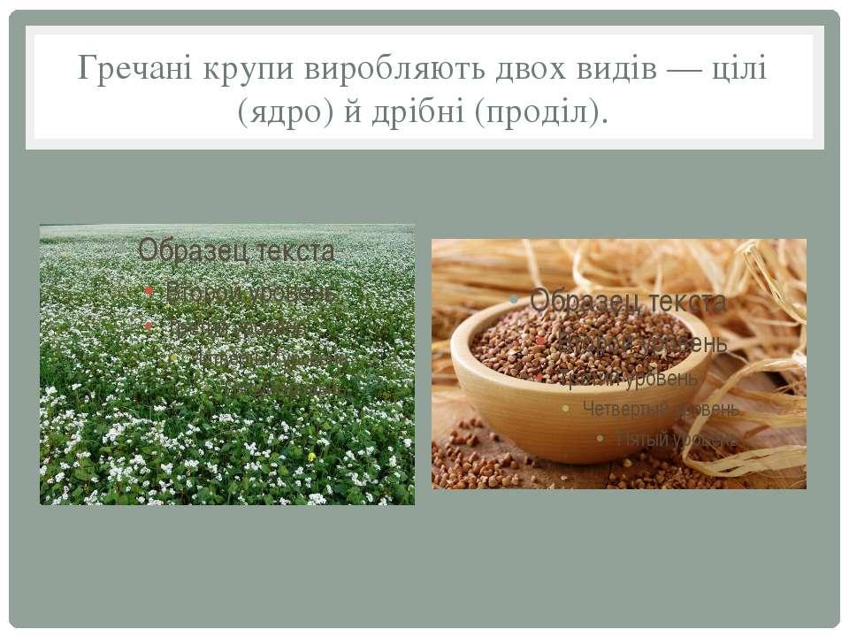 Гречані крупи виробляють двох видів — цілі (ядро) й дрібні (проділ).