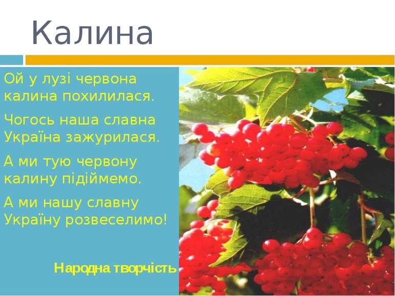 Калина Ой у лузі червона калина похилилася. Чогось наша славна Україна зажури...