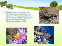 Предметом екології є різноманітність і структура зв'язків між організмами, їх...