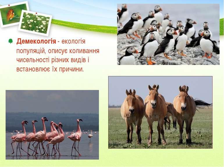 Демекологія - екологія популяцій, описує коливання чисельності різних видів і...