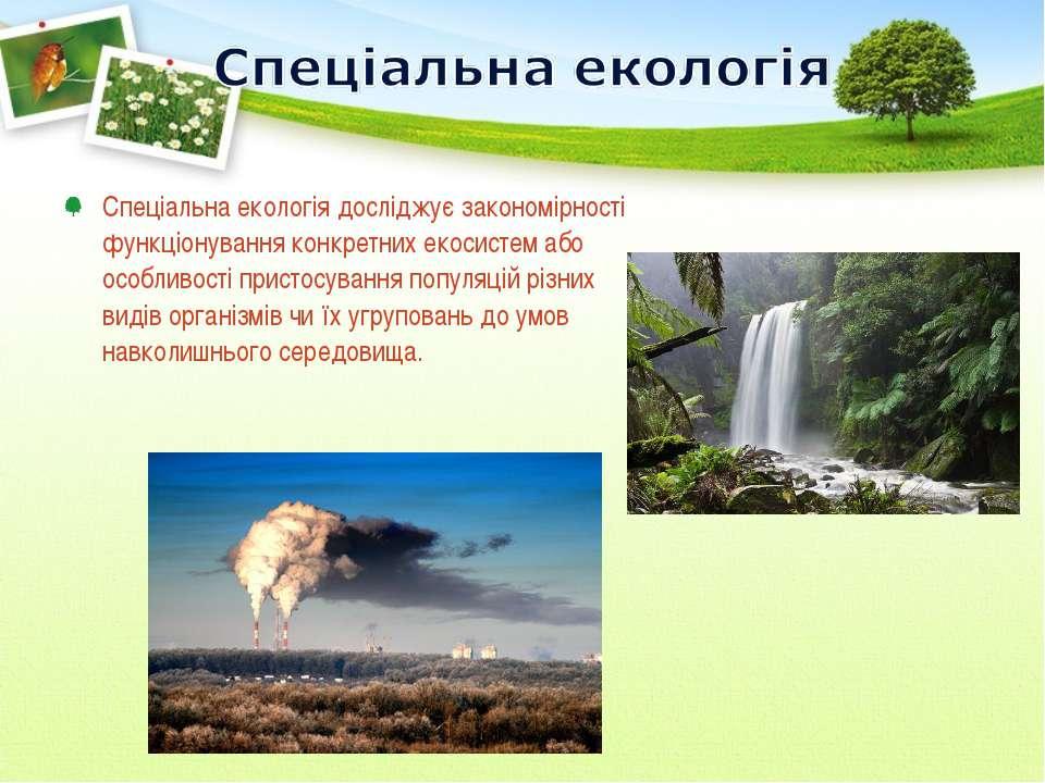 Спеціальна екологія досліджує закономірності функціонування конкретних екосис...