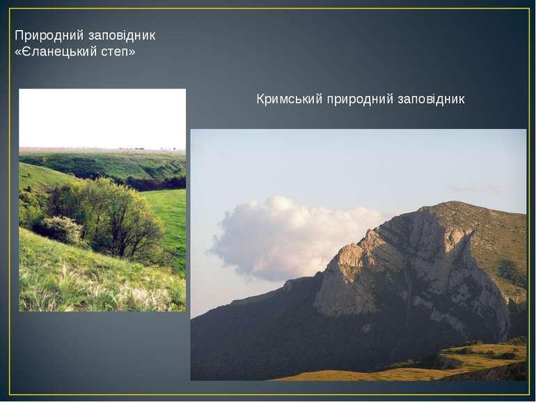 Природний заповідник «Єланецький степ» Кримський природний заповідник