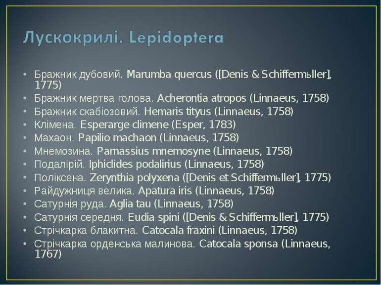 Бражник дубовий. Marumba quercus ([Denis & Schiffermьller], 1775) Бражник мер...