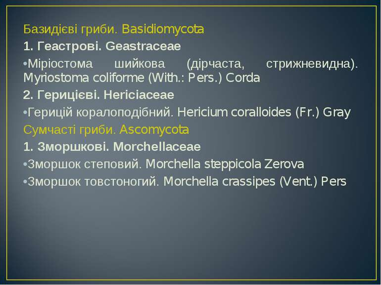 Базидієві гриби. Basidiomycota 1. Геастрові. Geastraceae Міріостома шийкова (...