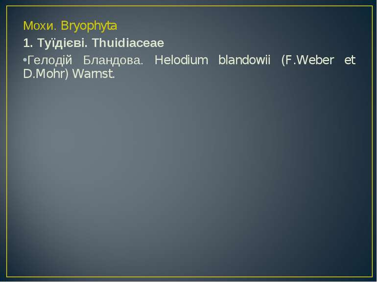 Мохи. Bryophyta 1. Туїдієві. Thuidiaceae Гелодій Бландова. Helodium blandowii...
