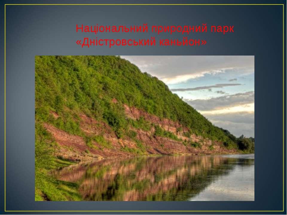 Національний природний парк «Дністровський каньйон»