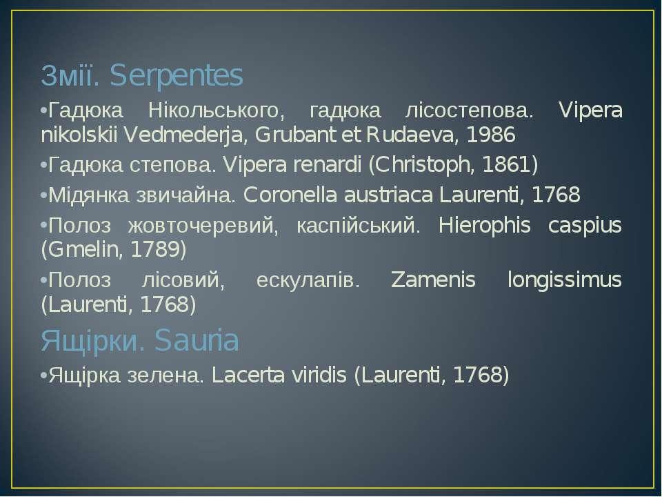 Змії. Serpentes Гадюка Нікольського, гадюка лісостепова. Vipera nikolskii Ved...