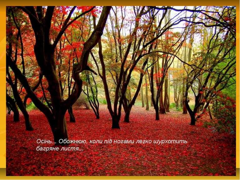 Осінь... Обожнюю, коли під ногами легко шурхотить багряне листя...
