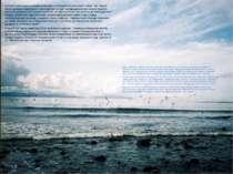 """Світовий океан має виняткове значення в життєзабезпеченні Землі. Океан - це """"..."""