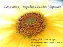 Соняшник – народний символ України! ГНВК «ЗШ I - III ст. №4 – Багатопрофільни...