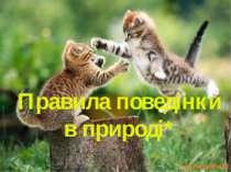 Правила поведінки в природі*