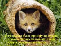 8. Не шуміти в лісі. Крик і гучна музика лякають лісових мешканців, і вони мо...