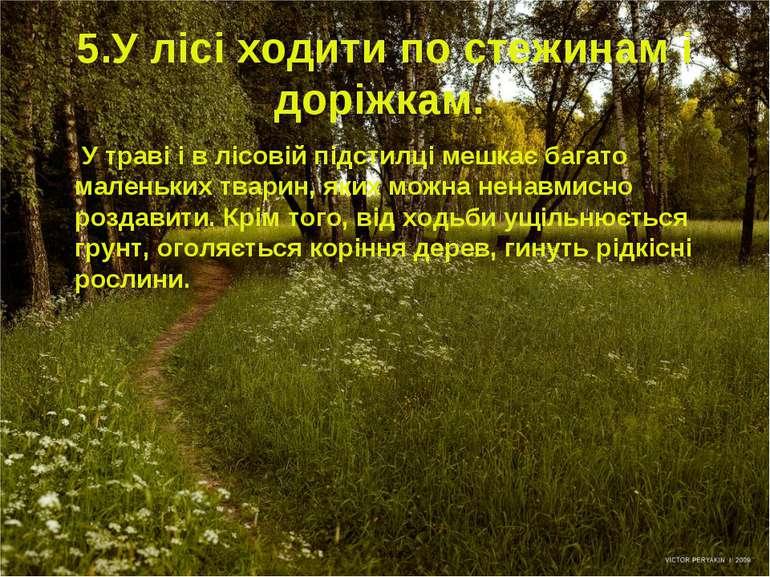 5.У лісі ходити по стежинам і доріжкам. У траві і в лісовій підстилці мешкає ...