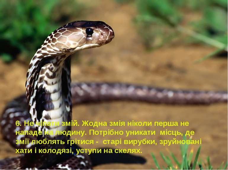 6. Не чіпати змій.Жодна змія ніколи перша не нападе на людину. Потрібно уник...