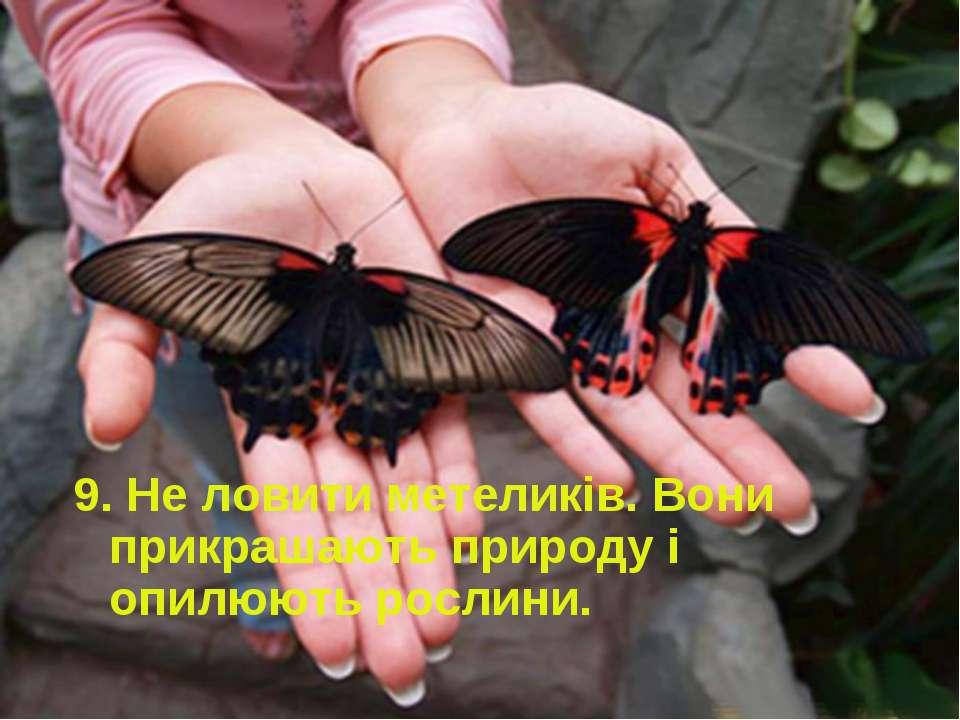 9. Не ловити метеликів. Вони прикрашають природу і опилюють рослини.