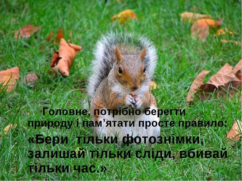 Головне, потрібно берегти природу і пам'ятати просте правило: «Беритільки ф...