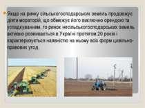 Якщо на ринку сільськогосподарських земель продовжує діяти мораторій, що обме...