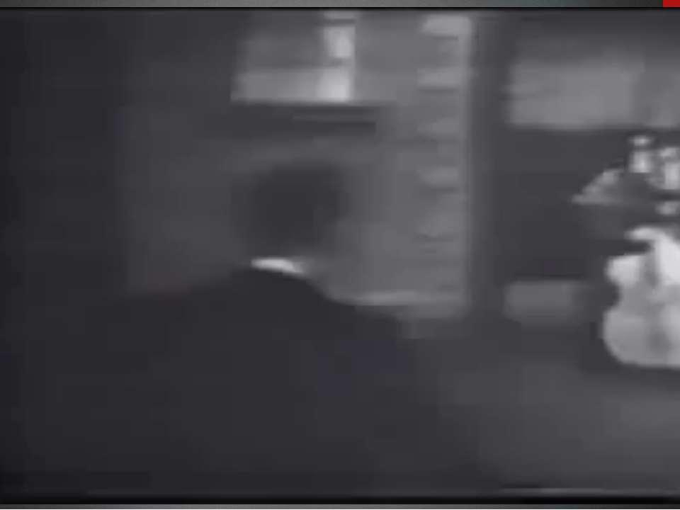 Вілл Хейлі Вілл Хейлі – співак у стилі кантрі та вестерн, виконував ритм-енд-...