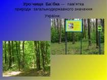 Уро чище Ба бка— пам'ятка природизагальнодержавного значення України.