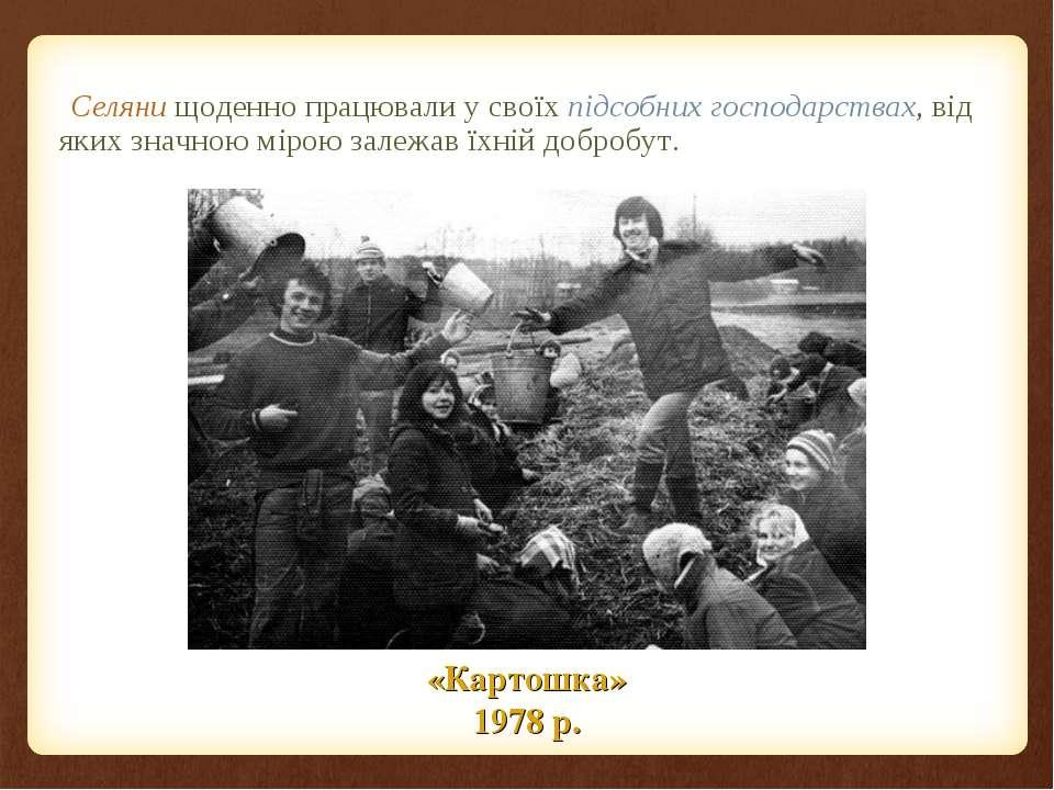 Селяни щоденно працювали у своїх підсобних господарствах, від яких значною мі...