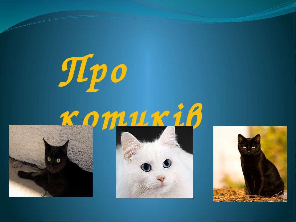 Про котиків