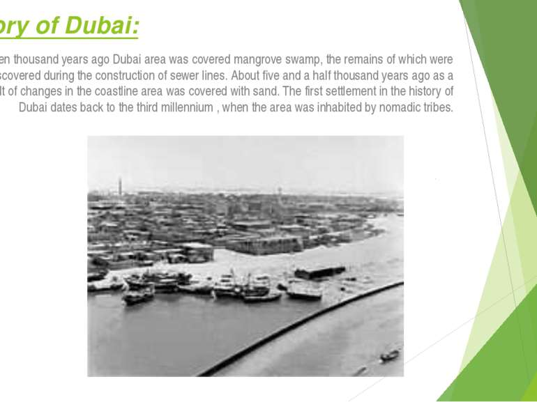 History of Dubai: Seven thousand years ago Dubai area was covered mangrove sw...